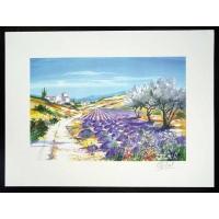 Bloeiende Lavendel