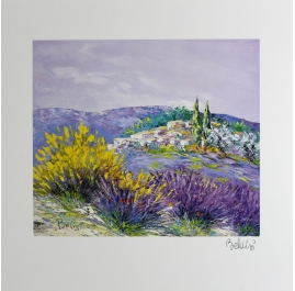 Broom and Lavender