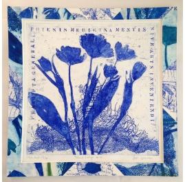 Tulpen blau
