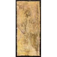 Fossielen Hagedis