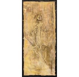 Fossils Lizard