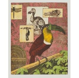 Interieur eines Ornithologen