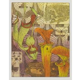Interieur eines Botanikers