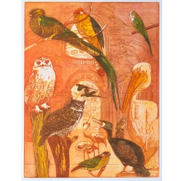Das Ornithologische Museum