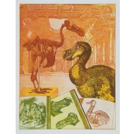Die Geschichte des Dodo