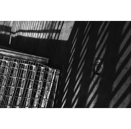 Cage-landscapes_I_6376