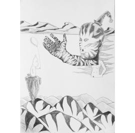 Series Drawings