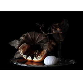 Natura Morte - Still life