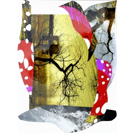 Serie Collages