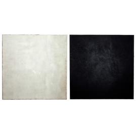 Wit en zwart - diptychon