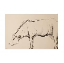 Kühe VIII: Maria auf der Weide