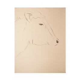Cows IX: Joseph