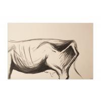 Cows X: Maria Magdalena