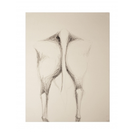 Cows XII: Marta from behind